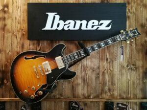 Ibanez JSM10-VYS John Scofield Signature Hollowbody Guitar 6-String Vintage Yellow Sunburst + Case