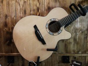 Takamine Mosaic, 6 String acoustic guitar + Hardcase, Limited Edition 2020!