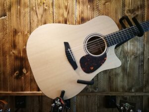Furch Blue Dc-SA 12-String + LR Baggs Preamp + Deluxe GigBag
