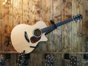 Furch Blue Gc-SW Acoustic Guitar + LR Baggs Preamp + DeluxeBag