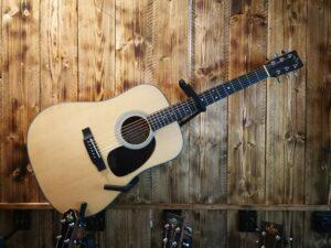 Sigma SDM-STE+ Acoustic Guitar + Preamp + Softshell Bag